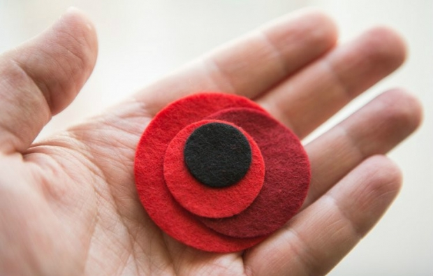 The symbol for remembering the victims of the war has become the poppy / Photo by UNIAN