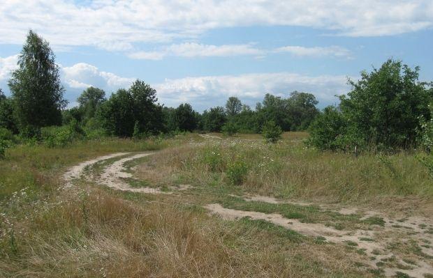 Остров Жуков / wikimedia.org