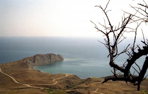 Содержание иона амония в море превышает норму в 168 раз / фото УНИАН