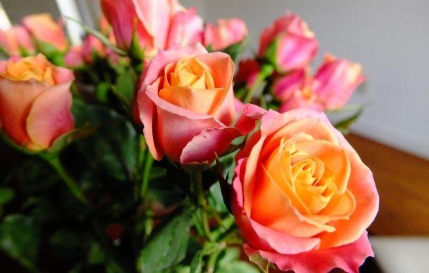 частіше вибирали щасливе обличчя, якщо до цього нюхали приємний запах / Фото: flickr.com