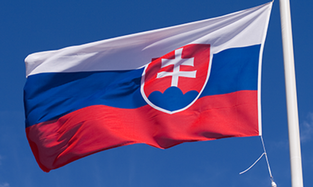 Словакия начнет тестирование на антиген COVID-19 на границе с Украиной / фото fb.ru