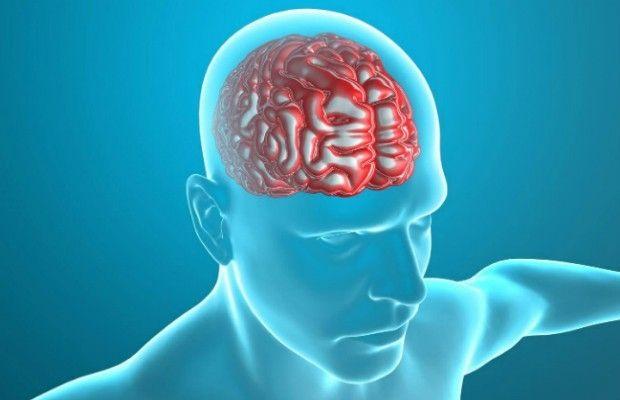 Вчені знайшли сліди бактерій у мозку людей з хворобою Альцгеймера