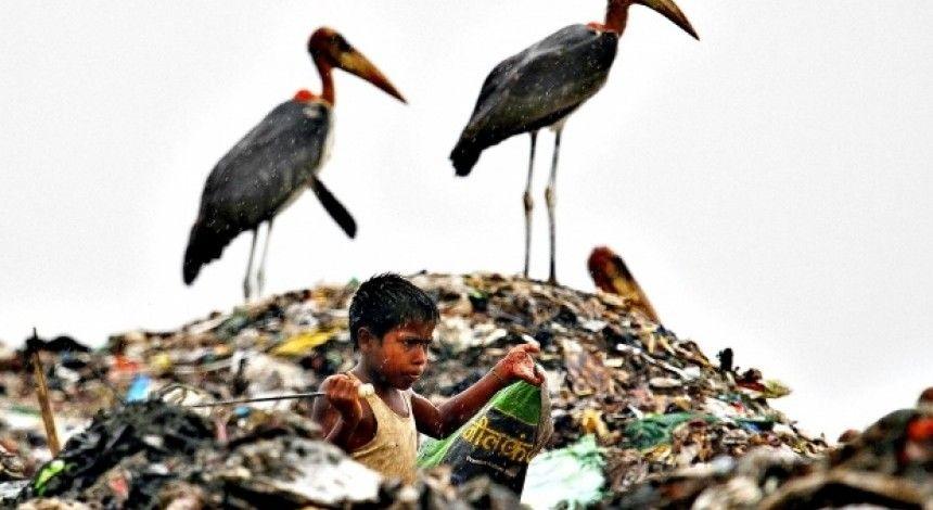 Порятунок планети від сміття: науковці відкрили фермент, що роз'їдає пластик за лічені дні (відео)