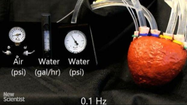 Пенообразный и высокоэластичный силикон позволяет прокачивать больший объем жидкости, чем у других приборов / Фото: lenta.ru