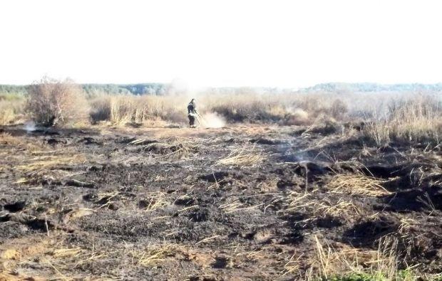 Внаслідок пожежі сухої трави сталося займання поверхневих покладів торфу / mns.gov.ua