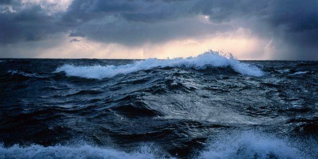 океан / dive.info