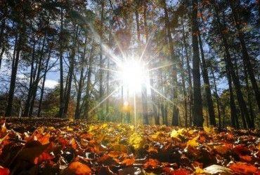 Лето не отступает: сегодня киевлян ожидает теплый осенний день