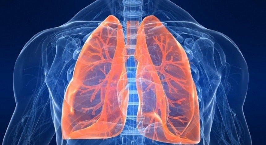 В Украине хроническим обструктивным заболеванием легких болеет 4% населения