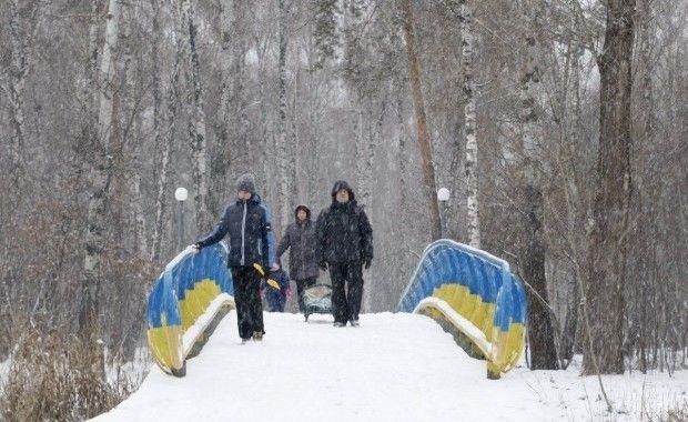 погода, снег, зима / Фото УНИАН