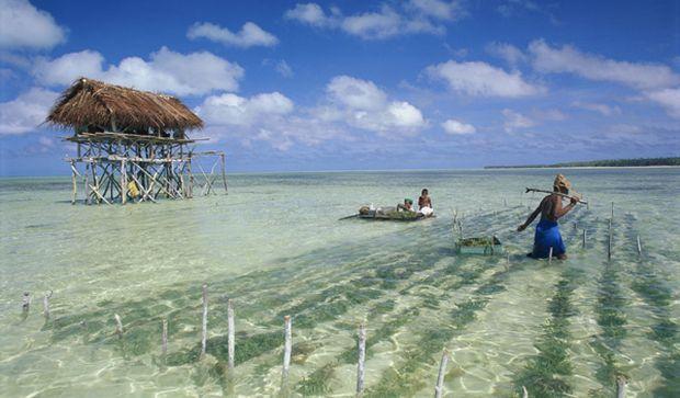 Острова государства Кирибати все больше уходят под воду / фото 100dorog.ru