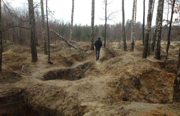 В лесах продолжают незаконно добывать янтарь, уничтожая природу / vlada.io