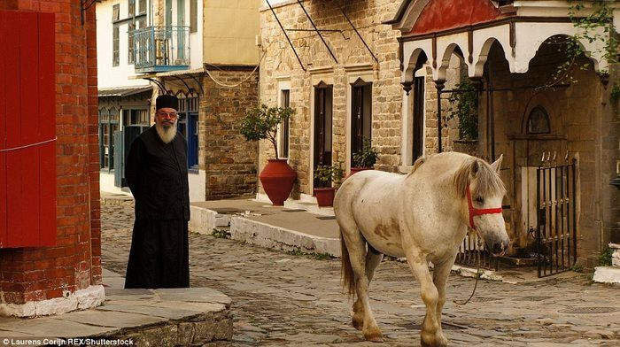 Конь на улицах Кареи.