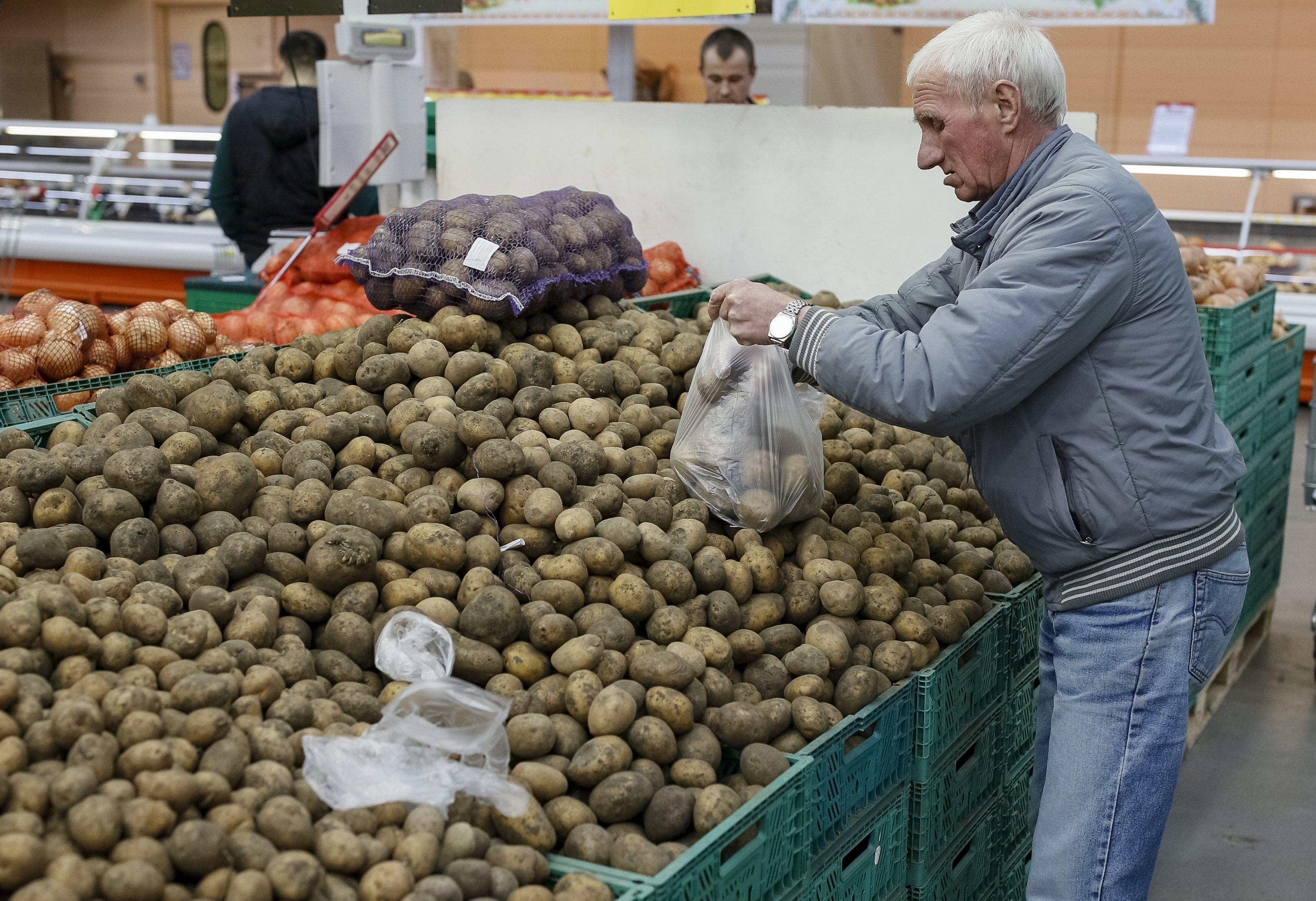 На рынке Украины растет предложение импортного картофеля / Иллюстрация REUTERS
