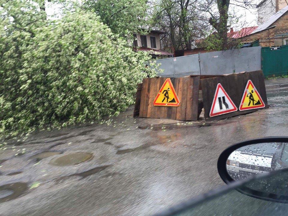 Місцями навіть повалені дерева /  dtp.kiev.ua