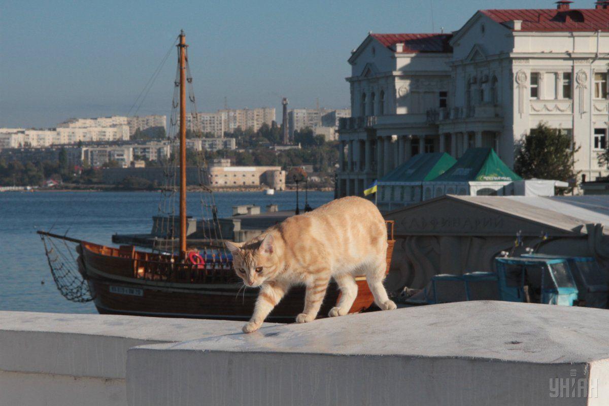 У Києві завтра потепліє / фото УНІАН