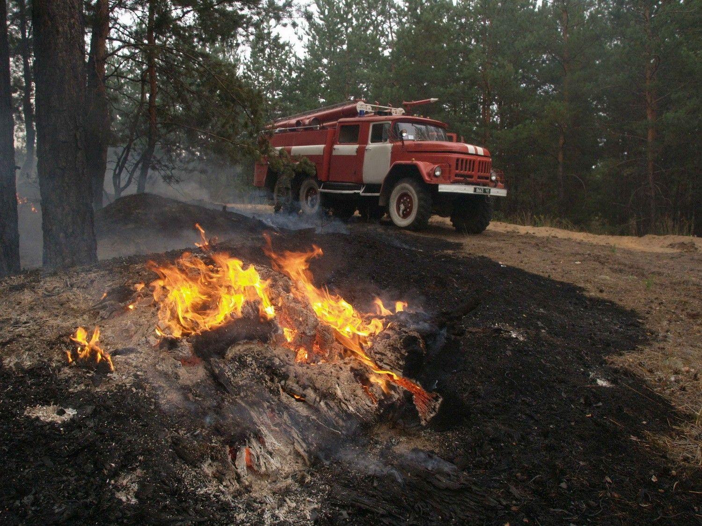 мчс гсчс пожар пожарники лес лесной / mns.gov.ua