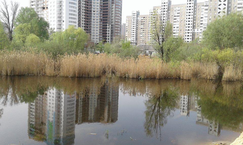 Желание застройщика засыпать озеро может привести к последствиям / Фото УНИАН