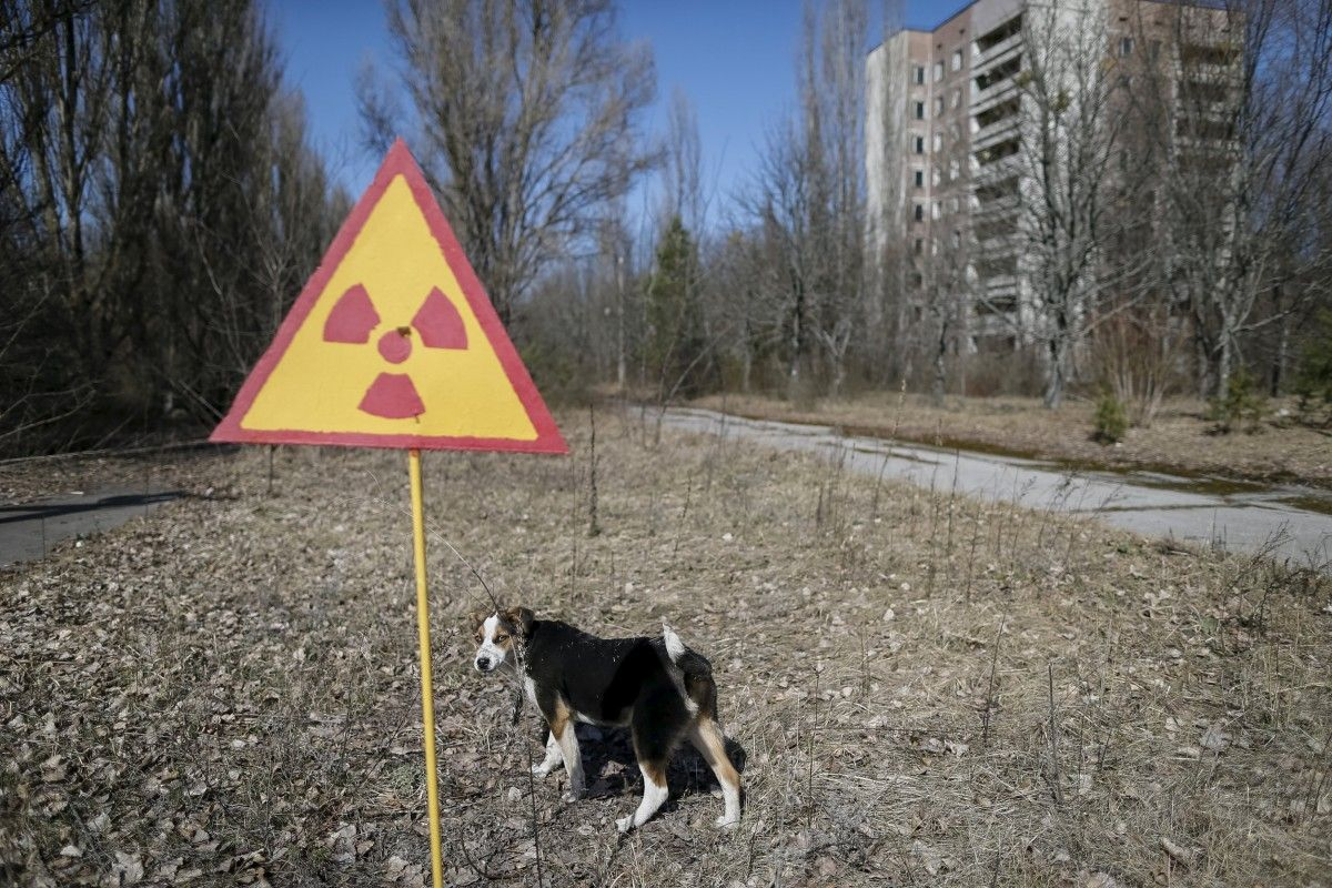 Some 47,500 people were evacuated from the town of Pripyat / REUTERS