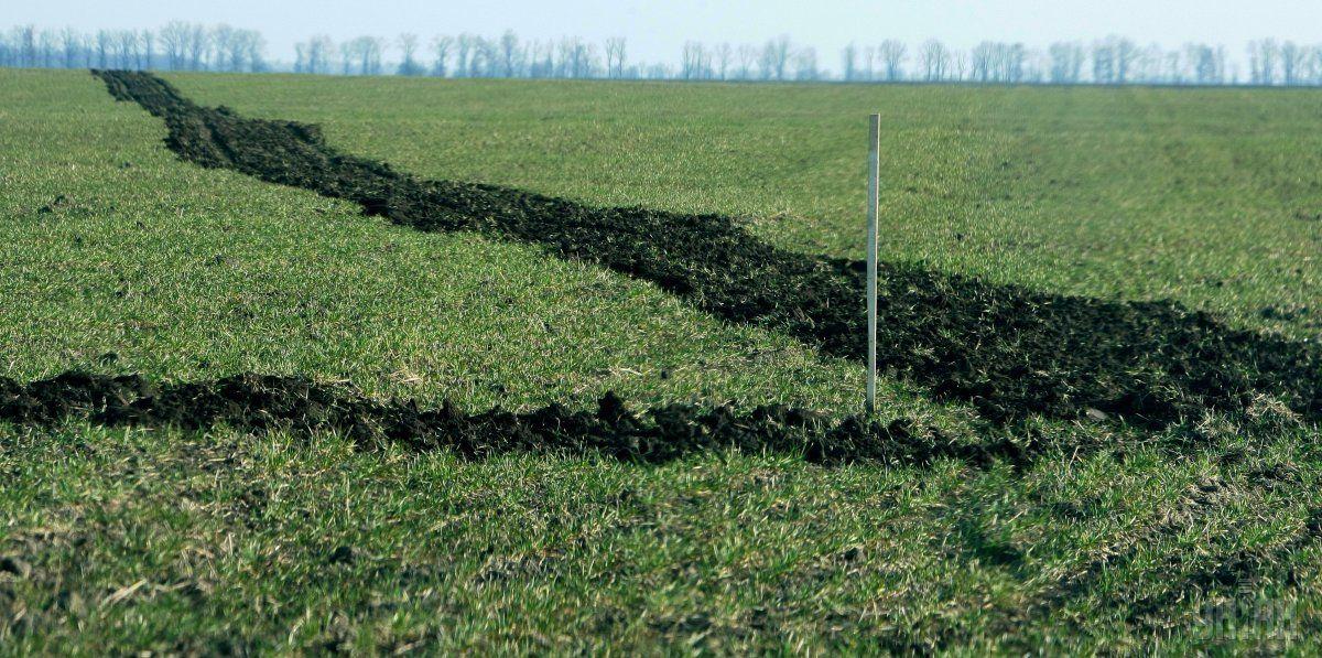 Земли под органическое производство хотят выделять по льготным ставкам / Фото УНИАН