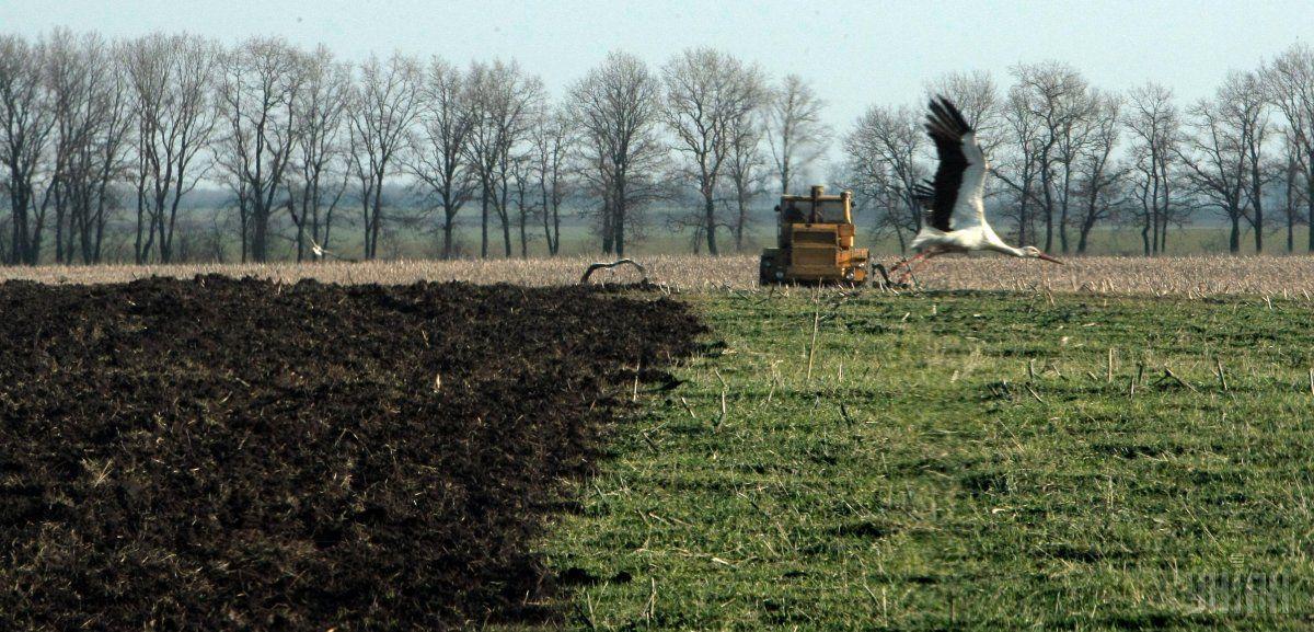 Українську землю зможуть купувати лише українські компанії / фото УНІАН