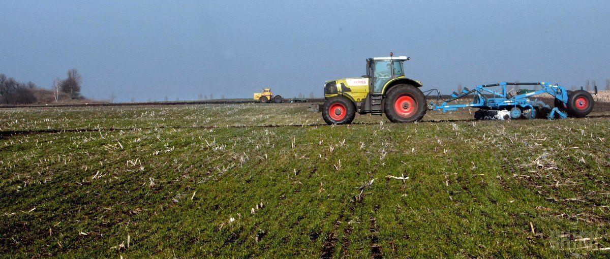 В Украине примерно 42 миллионов гектаров земли сельскохозяйственного назначения / фото УНИАН