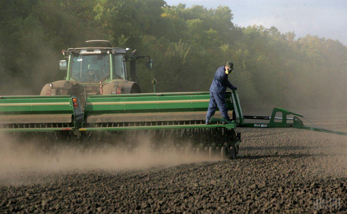 Семейные фермерские хозяйства смогут зарегистрироваться предпринимателями / фото УНИАН