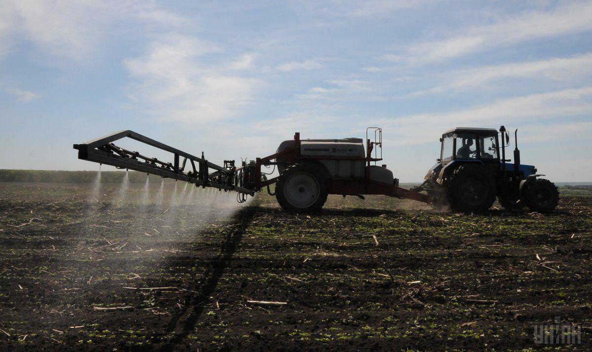 аграрии уже посеяли яровую пшеницу на площади 4 тыс. га или 2% к прогнозу / Фото УНИАН