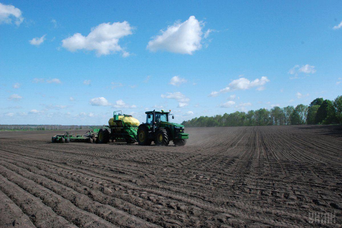 Аграрии засеяли ранними яровыми зерновыми 92% площадей/ фото УНИАН