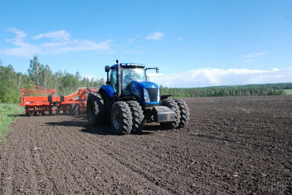 Дев'ять областей в Україні приступили до сівби озимих зернових / фото УНІАН