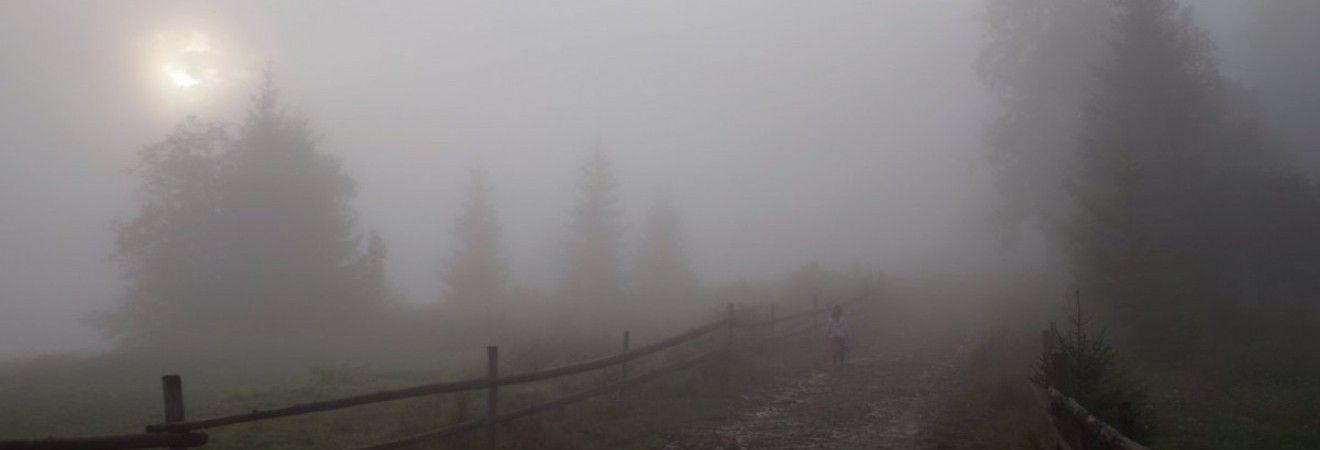 Гідрометцентр попереджає про туман в Україні