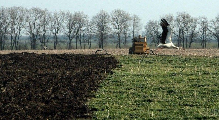 Prozorro запустило продажу прав на аренду земли