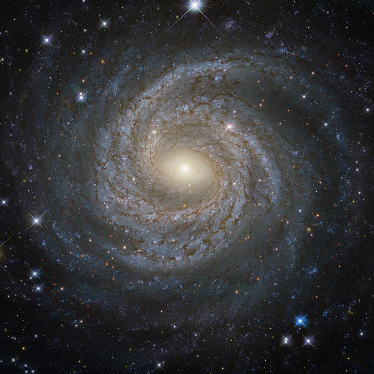 Одна из звезд Большого Ковша происходит из другой галактики / ESA/Hubble & NASA