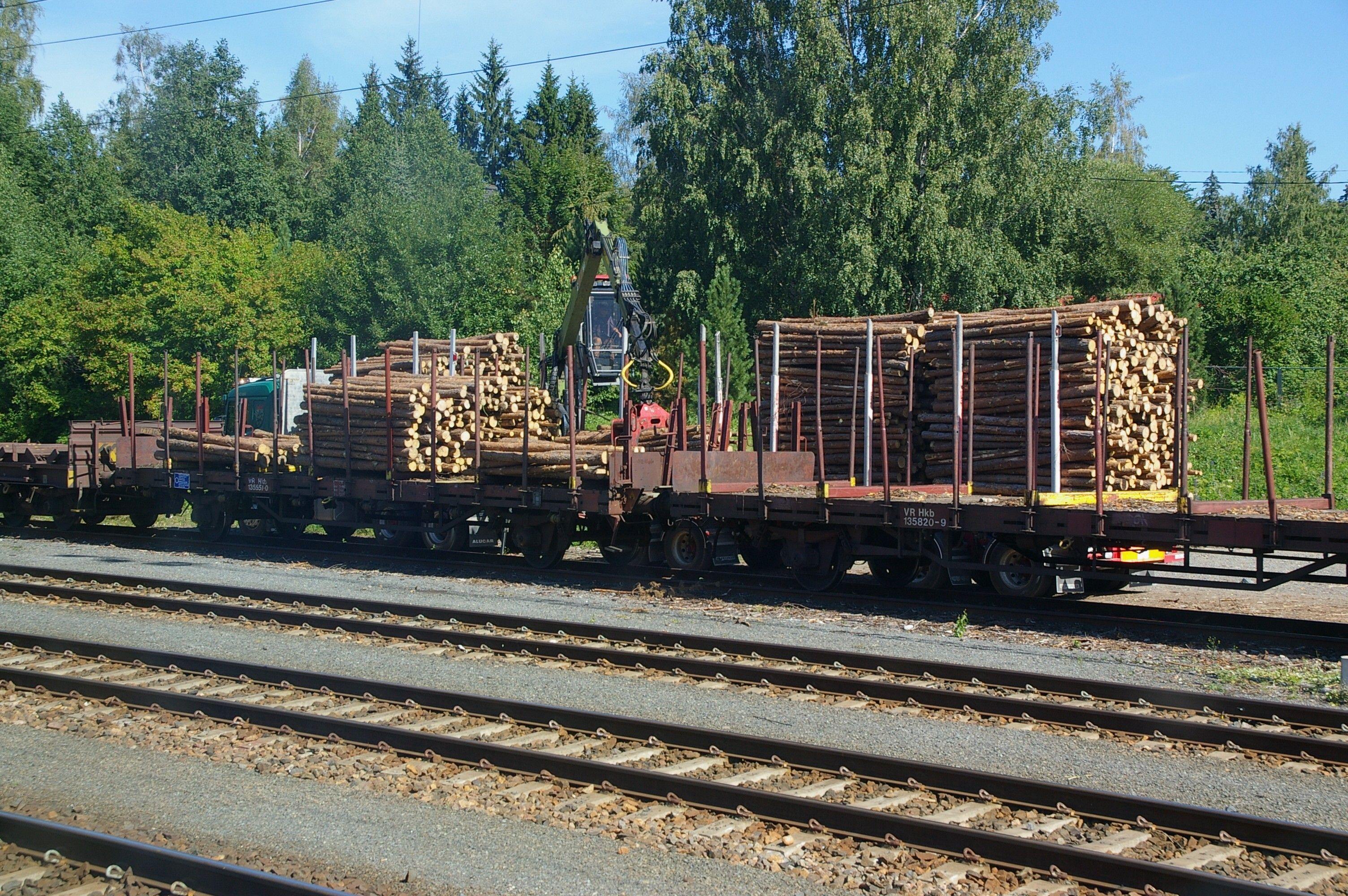 Кабмін доручив перевіряти кожен поїзд з експортної деревиною / фото commons.wikimedia.org