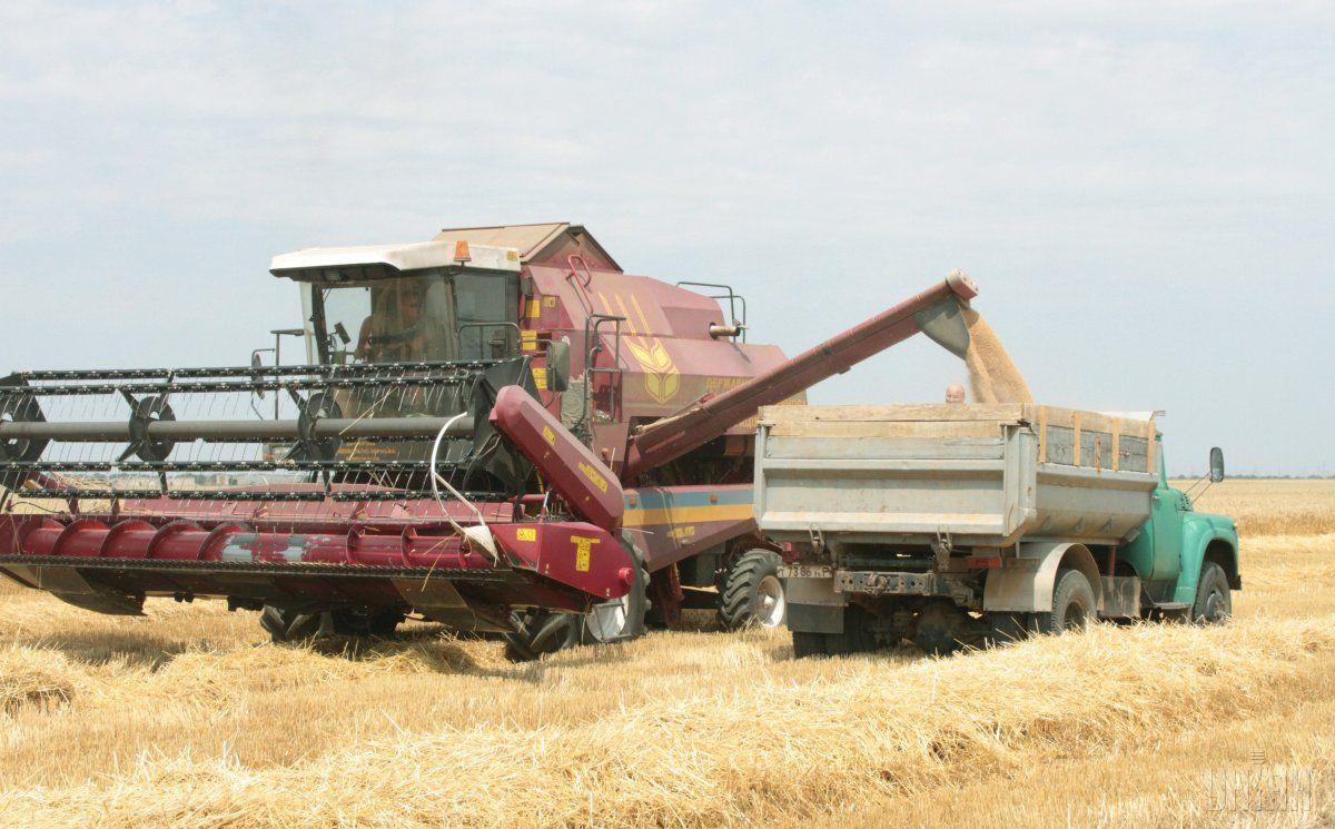 Аграрії до 13 вересня намолотили 38 млн тонн зернових / фото УНІАН