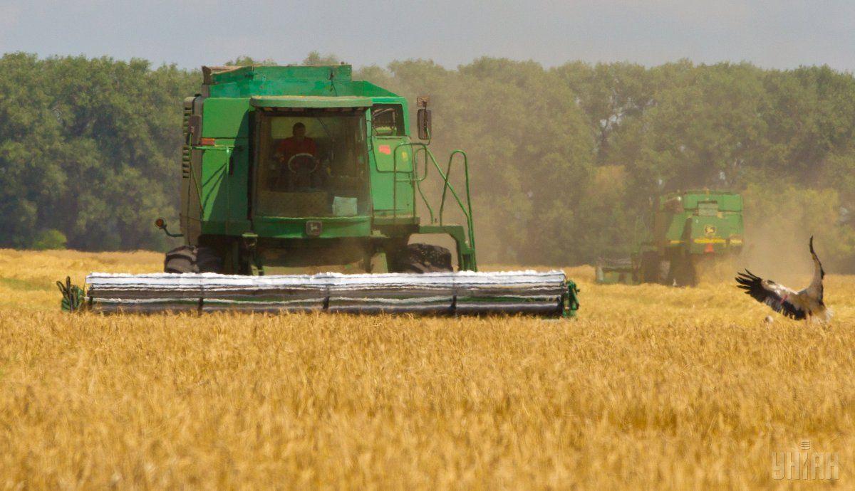 Аграрии к 4 июля намолотили 4,7 млн тонн зерна / фото УНИАН