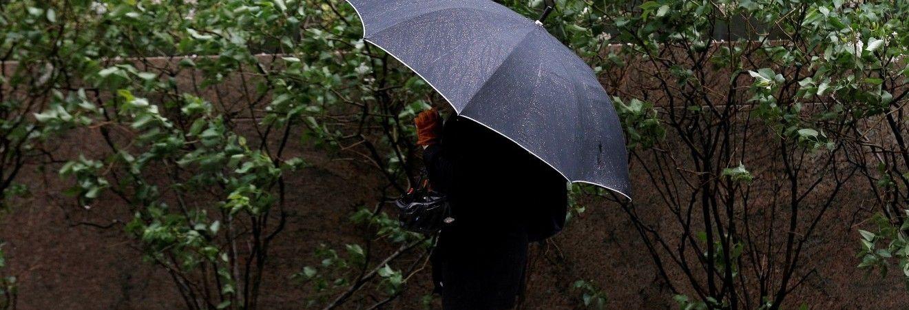 Завтра в большинстве регионов Украины похолодает и пройдут дожди (видеопрогноз)