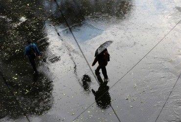 Завтра в Украине пройдут дожди, ночью местами похолодает до 0° (видеопрогноз)