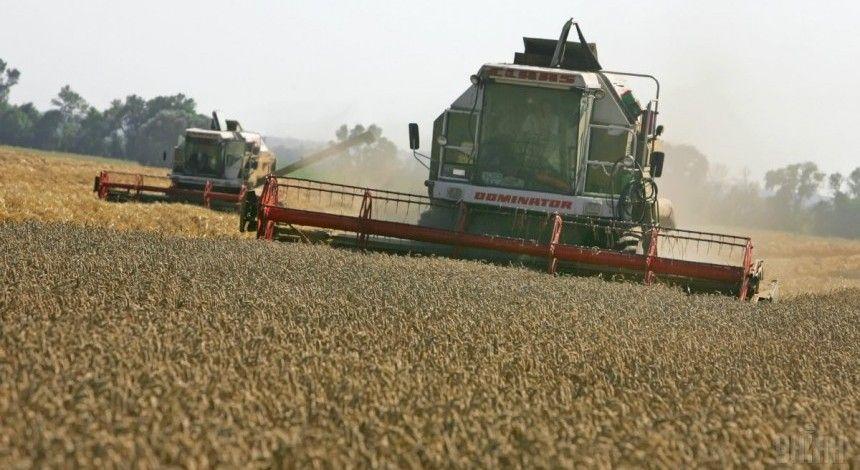 Частка агропрому в економіці України може зрости до 25% - прем'єр