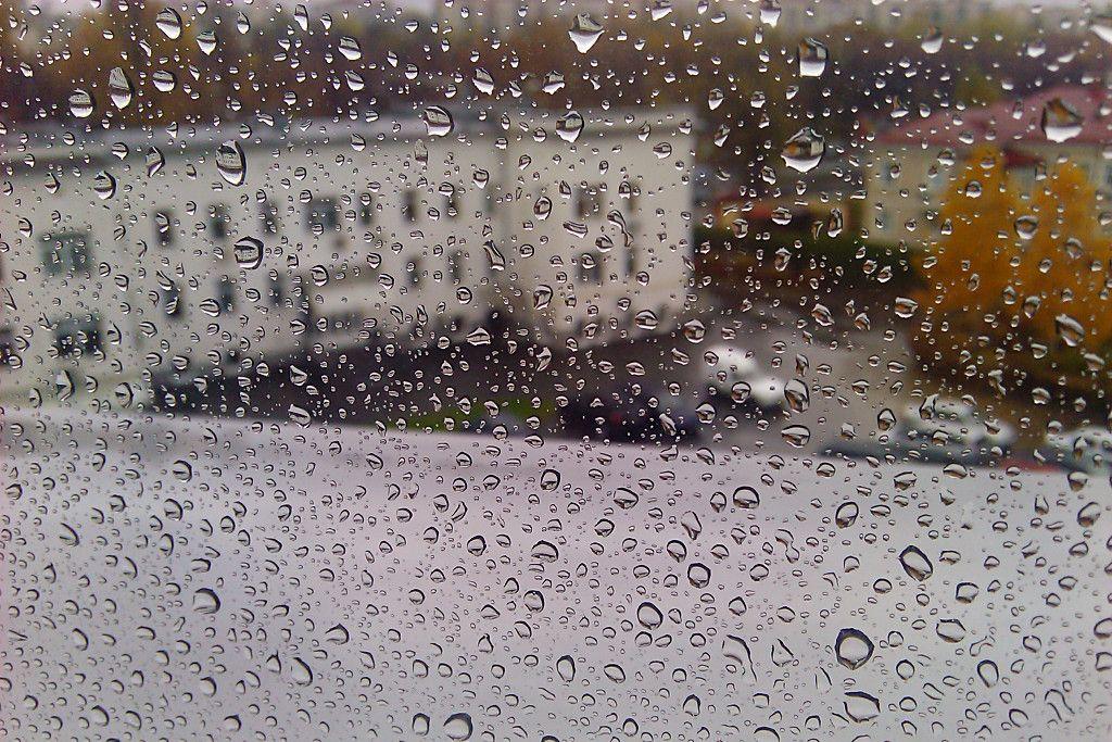 В Киеве сегодня пройдет дождь / tivasyk.info