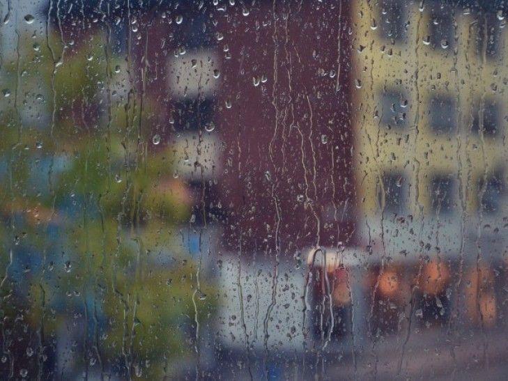 В Киеве октябрьские дожди компенсировали летний недостаток влаги / kyiv.depo.ua