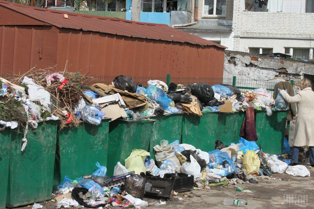 львов мусор / Фото УНИАН