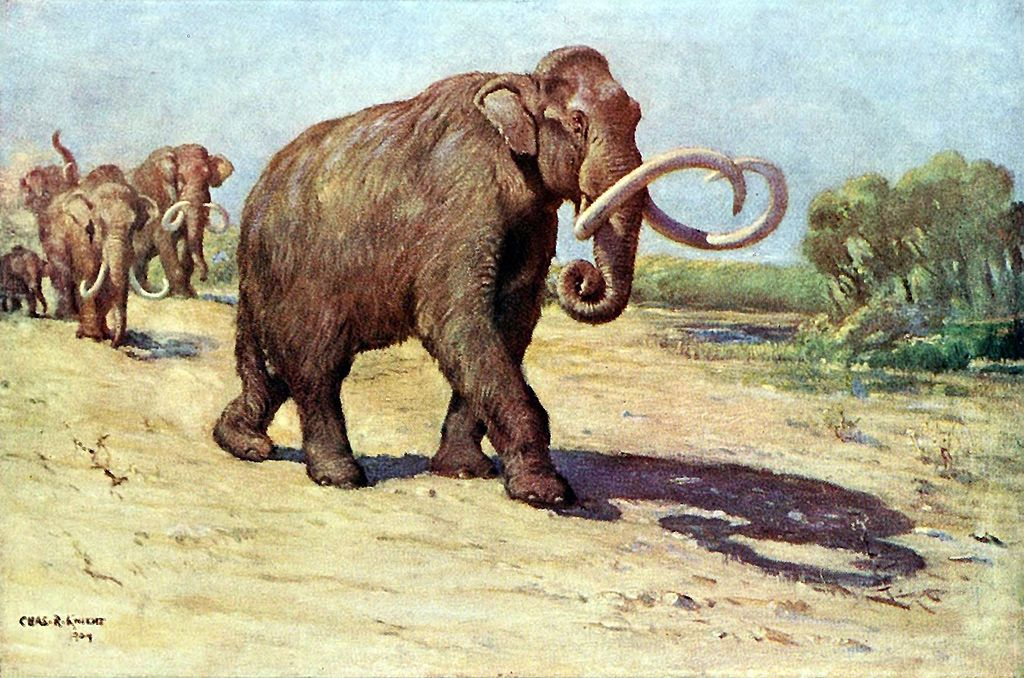 Painting by Charles R. Knight via wikipedia.org