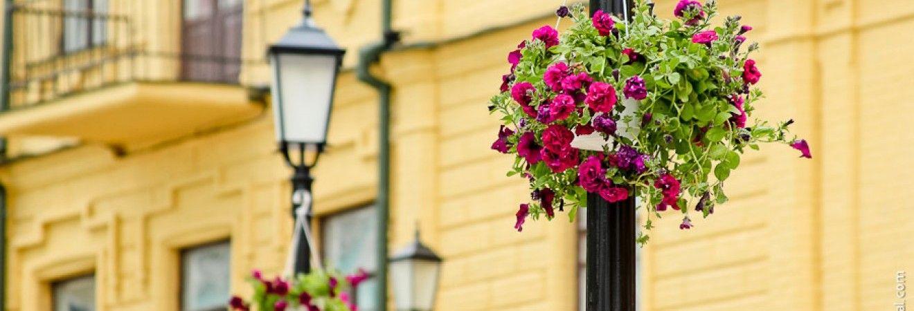 У Києві завтра без опадів, вдень до +25°