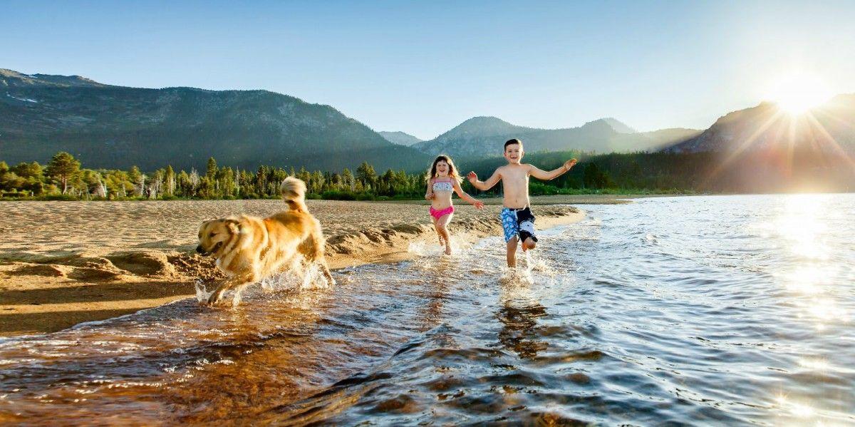 Купання в водоймах в день літнього сонцестояння очищає душу / фото rachelpiersigphotography.com
