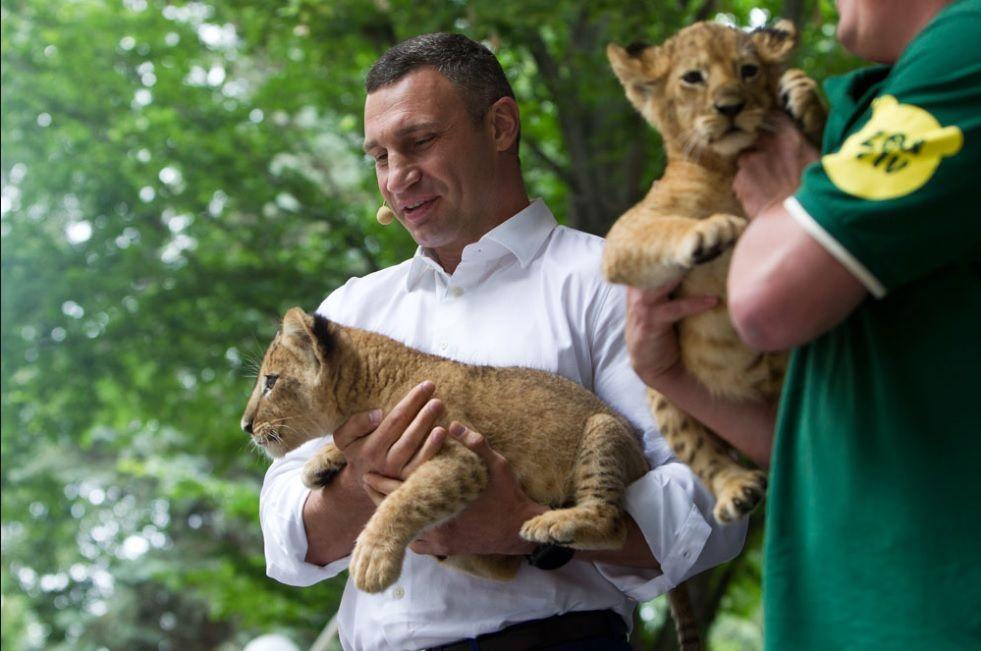 Виталий Кличко во время презентации концепции развития киевского зоопарка / Фото kiev.klichko.org