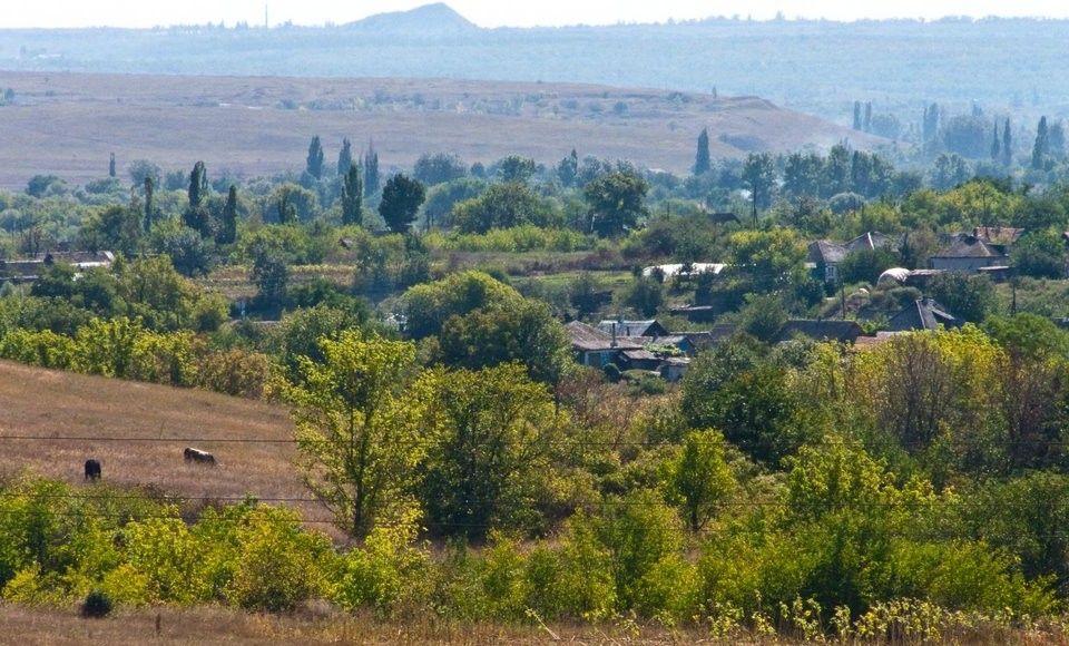 Позиції сил АТО біля Троїцького опинилися під обстрілом / panoramio.com/user/2832689