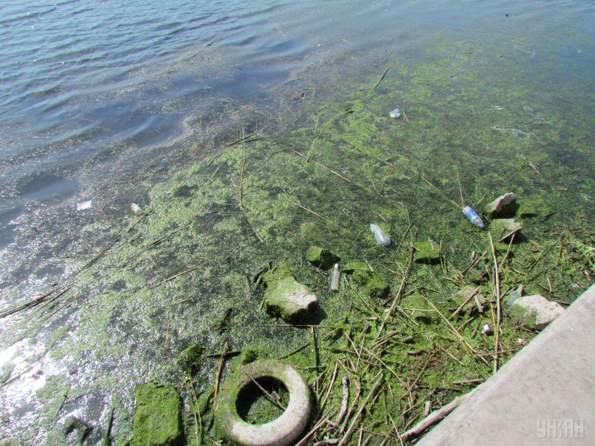Голова Держекоінспекції: Місцева влада повинна встановлювати межі водоохоронних смуг / Фото УНІАН
