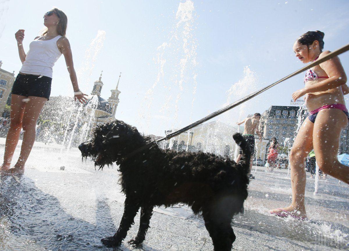 В україну прийшла справжня літня спека / фото УНІАН