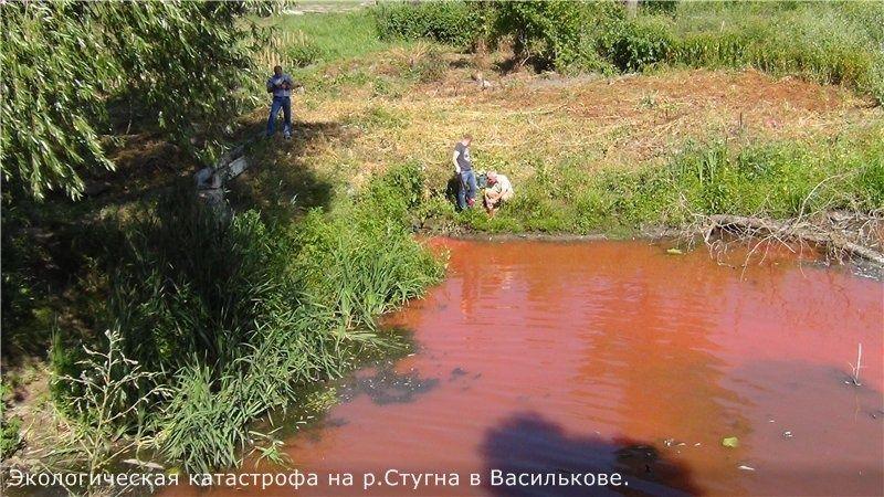Забруднення води у Стугні / shitimech.com