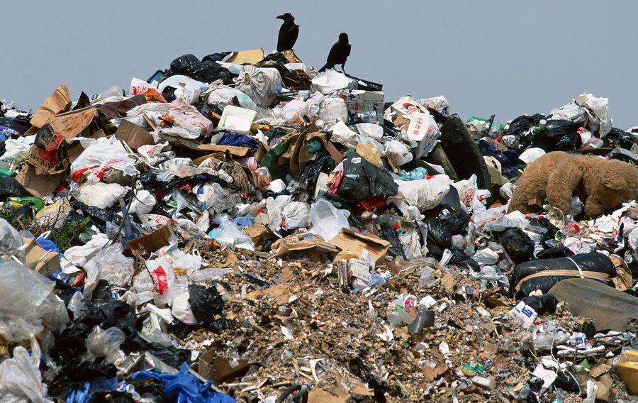 На Тернопольщине снова заметили тернопольское мусора / Фото like.sumy.ua
